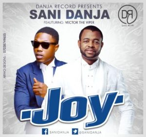 sani-danja-x-vector-joy-artwork
