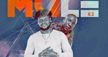 IMG 2145 351x185 - #Nigeria: Music: Jhargo - Mule (Remix) ft. Seriki | @Iam_jhargokush