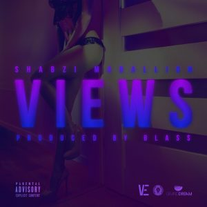 shabzi-madallion-views-cover_official