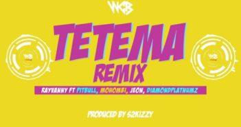 Tetema 768x432 1 351x185 - #Tanzania Music: Rayvanny ft. Patoranking, Zlatan Ibile, Diamond Platnumz – Tetema (Remix) II