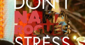 Nana Rogues – Don't Stress ft. Stonebwoy, Kwesi Arthur Video