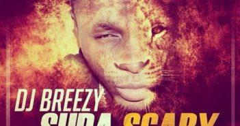DJ Breezy – Supa Scary ft. Shatta Wale, D-Black, Sarkodie, Mugeez, E.L
