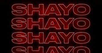 Shayoo Artwork 351x185 - #Nigeria: Music: Ceeza Milli – Shayo ft. Wizkid (Prod By Sazsy)